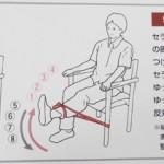膝関節運動