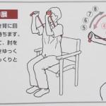肘関節運動